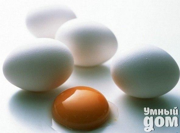 ЯЙЦО – ЭТО НУЖНО ЗНАТЬ КАЖДОМУ!!! Полезное содержимое С яйцами и продуктами, их содержащими, организм получает полноценный белок, конкурент мясному. Так, одно куриное яйцо вкрутую дает 78 калорий, почти 15 % суточной дозы белка, заменяет стакан молока или 50 г говядины. Из-за малой калорийности яйца используются в диетах для похудения. Белок и желток содержат незаменимые аминокислоты, 12 витаминов и множество микроэлементов, в том числе мощный антиоксидант – селен, а также 3 % дневной нормы…